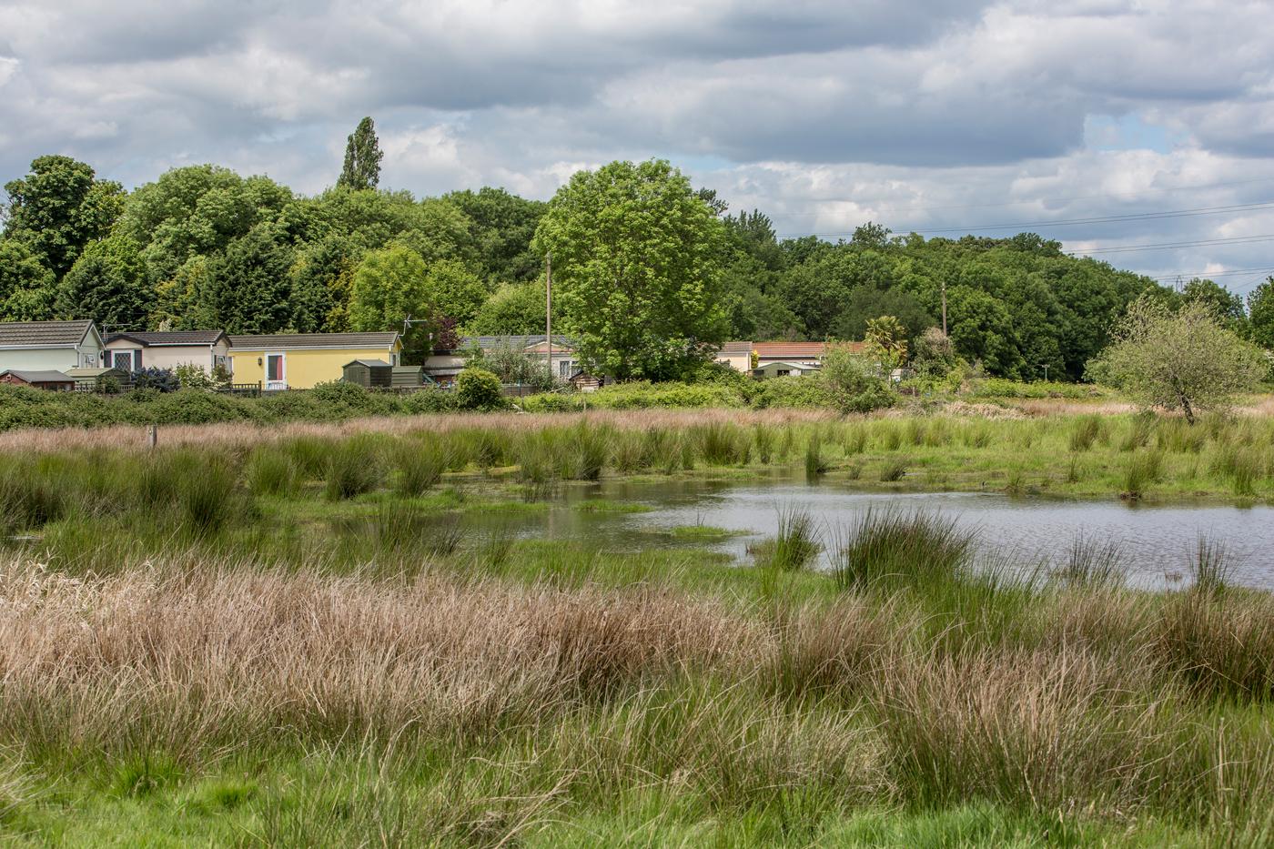 Meadowlands Park